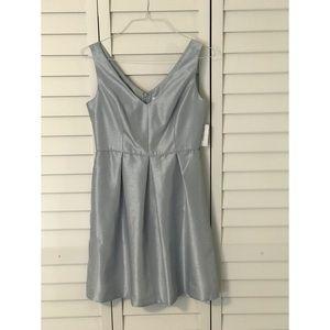 Dress Barn Cinderella Blue Dress
